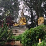 Serene setting of Wat Pha Lat!