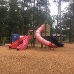 Beautiful Community Park