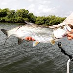 Antigua Fly Fishing & Light Tackle Charters Φωτογραφία