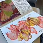 Carsten you asked to see my painting of the African Tulip Tree flower: Here tis.