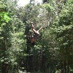 Up and down zipline, you want to try it?