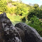 صورة فوتوغرافية لـ Japanese Tea Gardens