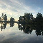 Wild Sweden - safariturer i Sverige-bild