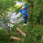 Treetop Trek Foto