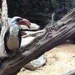 Photo of National Zoological Park
