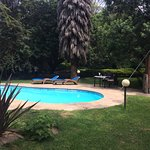 Pool - Wileli House Photo