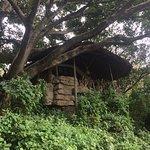 Wileli House Photo