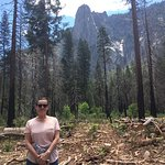 Foto van Yosemite Falls