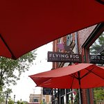 Фотография The Flying Fig
