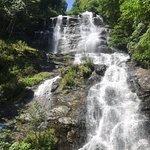 ภาพถ่ายของ Amicalola Falls State Park