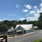 View from Swizzle Inn