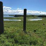 Kunstwerk van Richard Serra