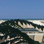 Фотография Le ruote sul mare