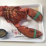 Bilde fra Young's Lobster Pound