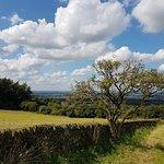 Foto de Werneth Low Country Park