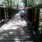 伊克罗杰克齐宾公园照片