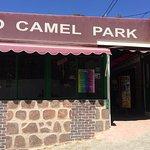 Φωτογραφία: Camel Park Arteara
