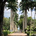 Aburi Botanical Gardensの写真