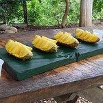 Foto Pinilla Canopy Tour