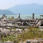 Nexen Beach from the pathway behind the Howe Sound Pub