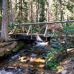 Beaver Lake Trail resmi