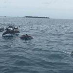 Fulidhoo Dive & Water Sports Foto