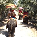 Photo de Damnoen Saduak Elephant Village
