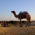 My Respected Guest Nike Bobenbach From Germany At Sunset Point With Camel Owner Sawai Ram Dewasi