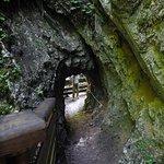 Photo de Wolfsklamm Gorge
