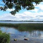 Portumna Forest Park صورة فوتوغرافية