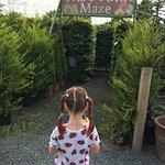 Foto de Derwen Garden Centre & Farm Shop