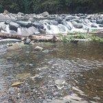 Bild från Pance River