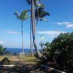 shady walkways to the beach