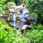 Bilde fra Sapphire Falls & Jungle Spa