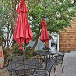 Garden Patio Dining