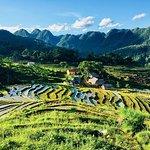 Ảnh về Green Discovery Indochina