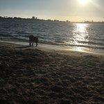 Foto de Fiesta Island