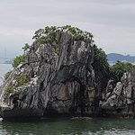 Foto de Pelican Cruises Day Tours Halong Bay
