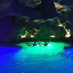 Ảnh về H2O Aquapark