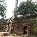 ภาพถ่ายของ Cambodian Pride Tours - Day Tours