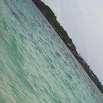 Fingernail Island resmi