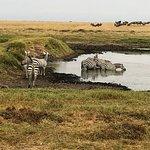Foto van Amboseli National Park