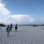 Shell Island Foto