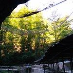Foto van Punkva Caves