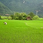 Foto di Asia Master Travel - Day Tours
