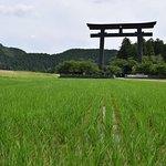 Hongu's main torii is majestic in the rice fields