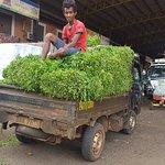 Φωτογραφία: Dambulla Dedicated Economic Centre