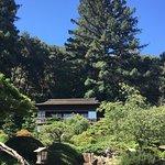 Foto de Hakone Gardens