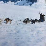 Me waving with Jeremy on back of sled while dogs were running