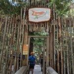 Foto de Ziptrek Ecotours